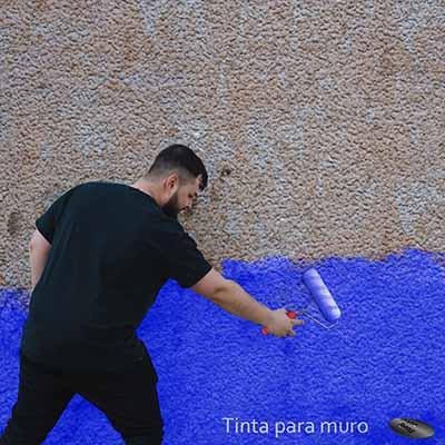 Tinta ideal para muros